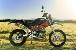 Ducati Terra Mostro