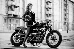 RSD Harley Cafe Sportster