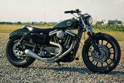 Hide custom Sportster