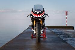 Ducati custom: DSC 'Bite'