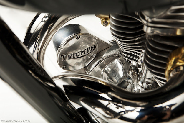 Triumph custom: the Falcon Kestrel
