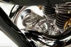 Triumph custom: the Falcon Kestrel