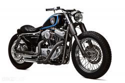 "Harley Sportster 1200 custom: ""Stellalpina"""