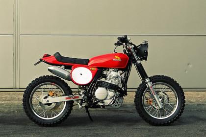 Honda Dominator custom
