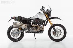 Harley dual sport motorcycle