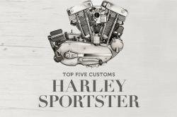 Top 5 Harley Sportster customs
