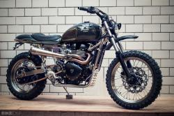 Triumph Scrambler by Kingston Custom