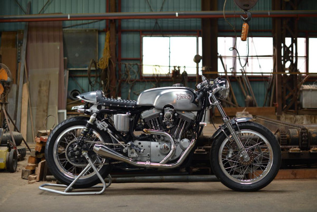 Harley XL1200 by Berry Bads