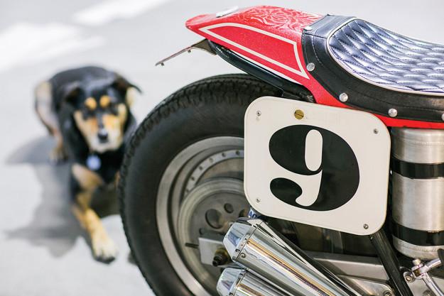 Triumphant: a Supercharged Triumph Street Tracker