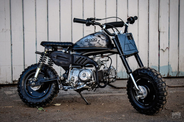 1982 Honda Z50R mini bike by Droog Moto